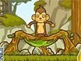Monty der fliegende Affe