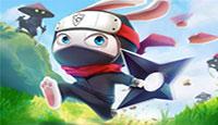 Ninja Rabbit Spielen