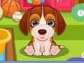 Puppy Care 2